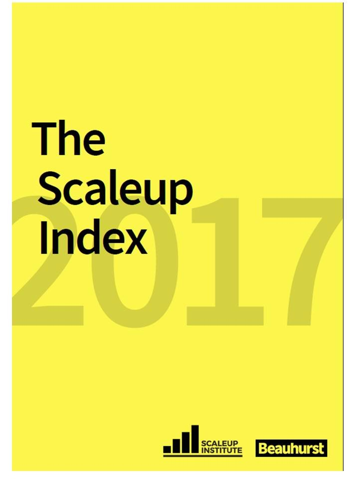 HiB success recognised in '2017 Scale up Index'