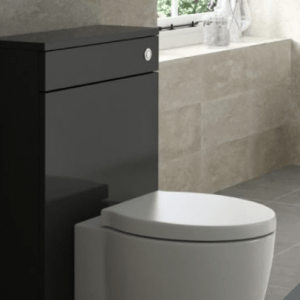 toilet back to wall unit